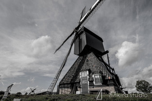 netherland-9672.jpg