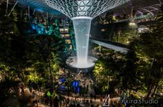 singapore-3240.jpg