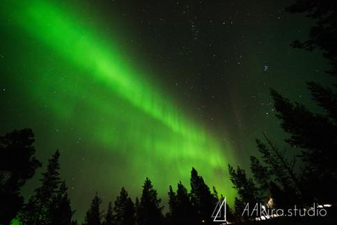 finland-0411.jpg