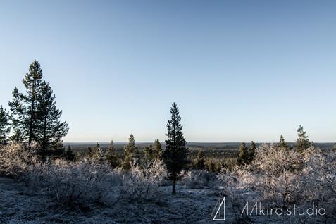 finland-0642.jpg