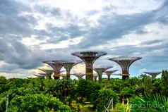singapore-2999.jpg