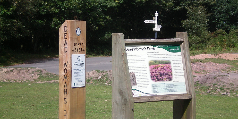 Walk 3. Dead Woman's Ditch to Bicknoller Combe and back – 10 miles / 6 hours