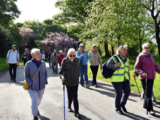 Walking for Health in Somerset