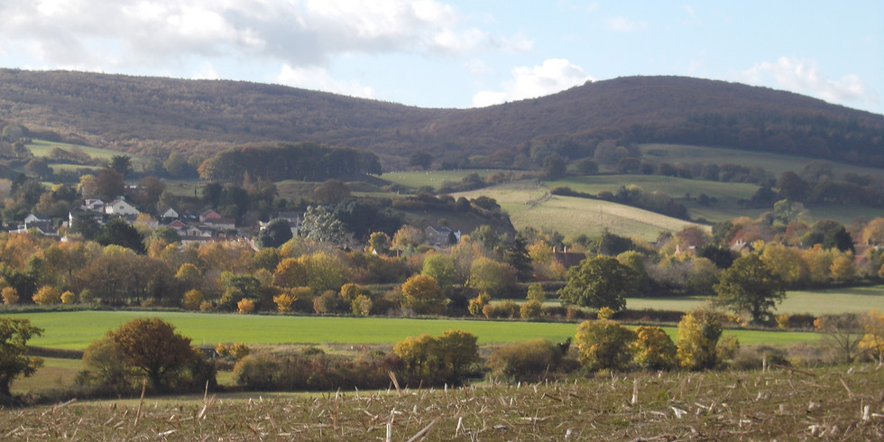 Walk 1. Nether Stowey to Pinnacle Hill - 3 miles / 1.5 hours