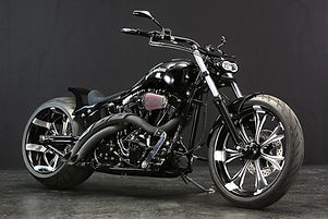 Harley Twin Cam Softail -Mother Lake- by Bad Land 01.jpg