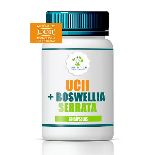 UCII + Boswellia Serrata