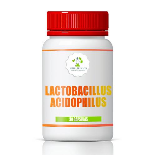 Lactobacillus Acodophilus
