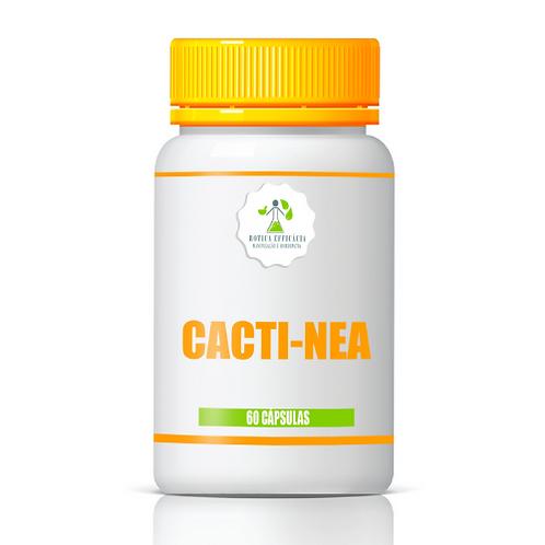 Cacti-Nea