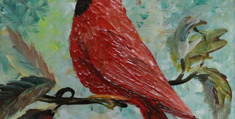"""""""Cardinal"""" 8x10"""