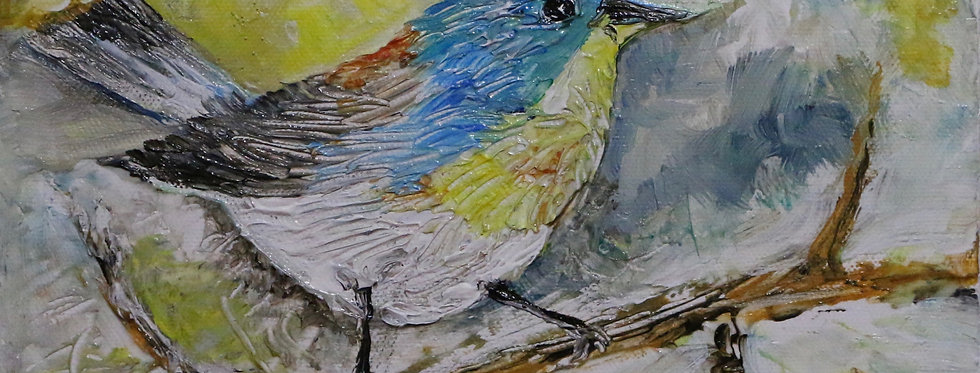 """""""In The Nest"""" 10x8"""