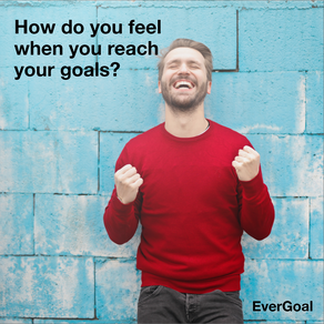 How do you feel when you reach your goals?