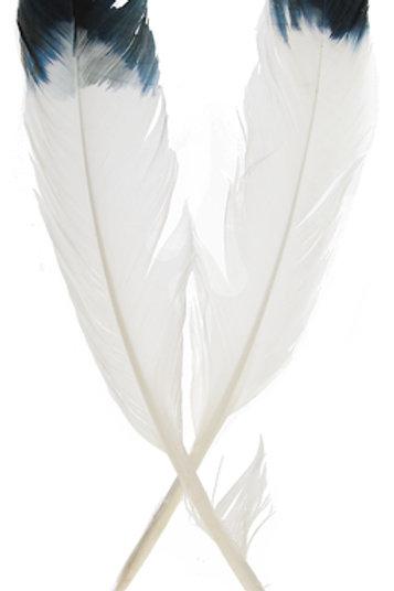 "IMIT.EAGLE FEATHERS 12""WHT/BLK"