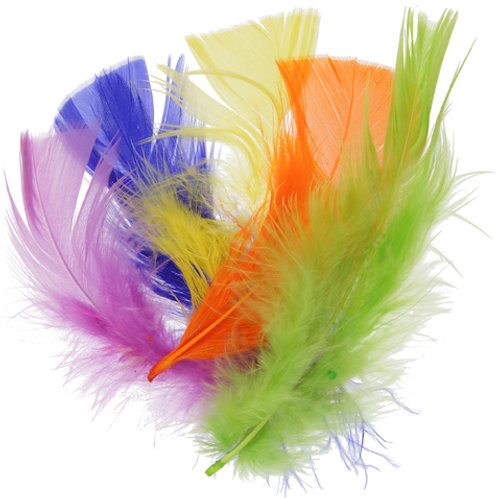 "PLUMES 4-6"" NEON MIX"