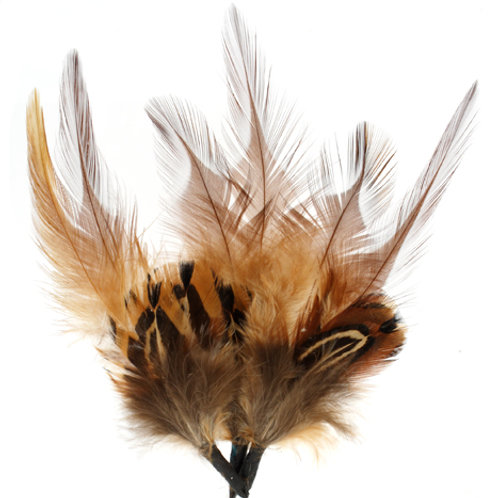 HAT TRIM FEATHER Shades of Brown