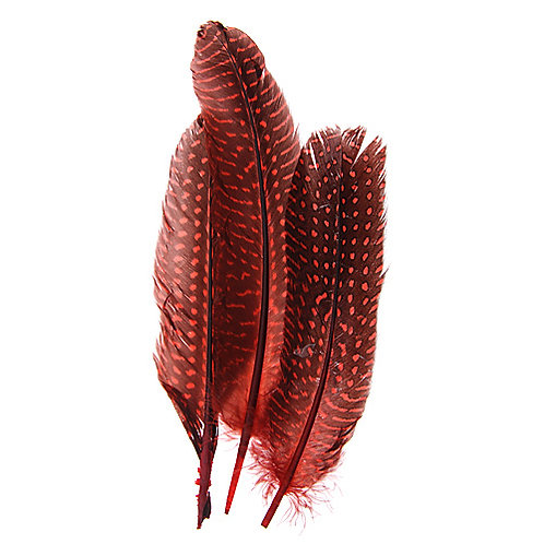 "GUINEA FOWL QUILL 6-9"" RED"