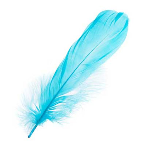 """GOOSE FEATHERS 5-7"""" TURQUOISE"""