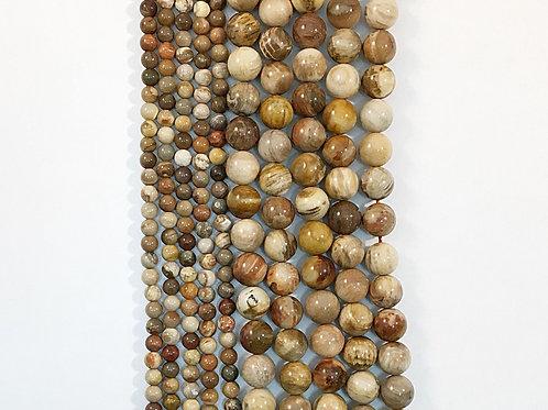 Natural Multi Petrified Wood Beads 4mm