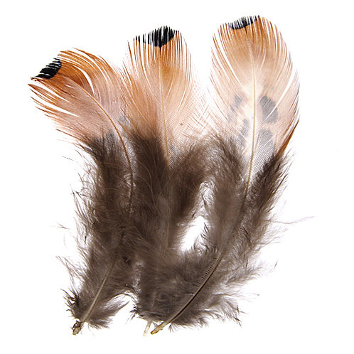 PHEASANT FEATHERS GOLD
