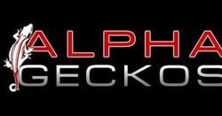 Alpha Geckos