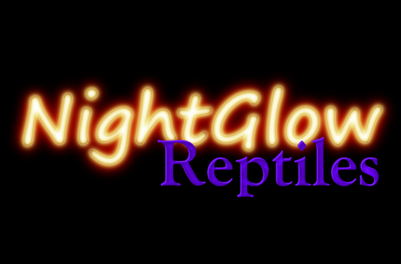 Night Glow Reptiles