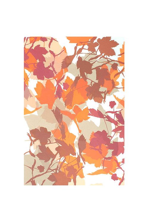 1. Neutrals and Orange 56x38cm
