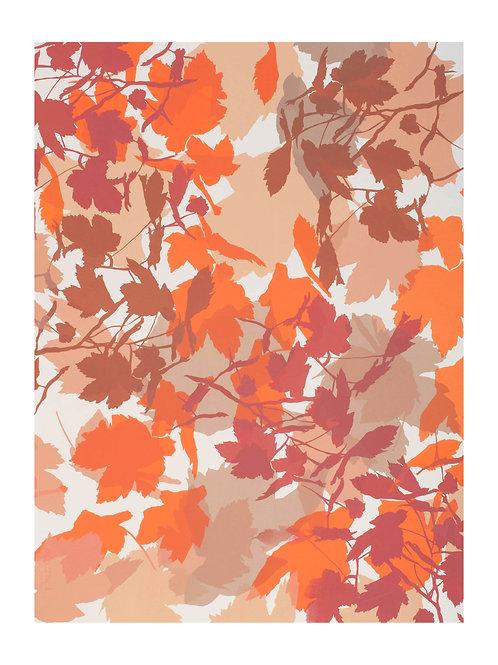 3. Neutrals and Orange 76 x 56 cm