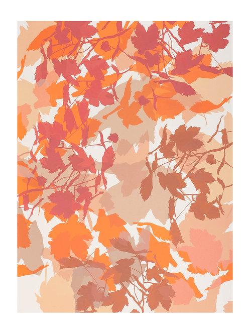 1. Neutrals and Orange 76 x 56 cm