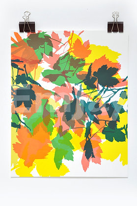 Green & Orange Leaves 2