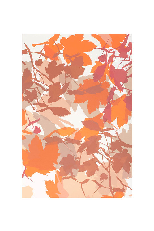 4. Neutrals and Orange 56x38cm