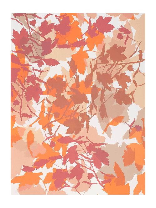 5. Neutrals and Orange 76 x 56 cm