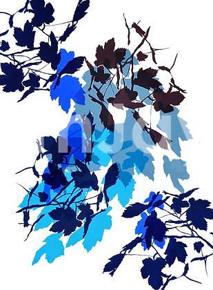 Cool Shades of Blue 11