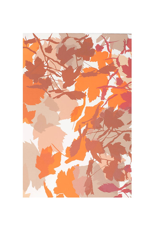 6. Neutrals and Orange 56x38cm