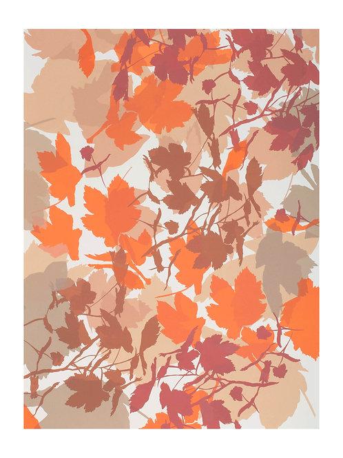 4. Neutrals and Orange 76 x 56 cm