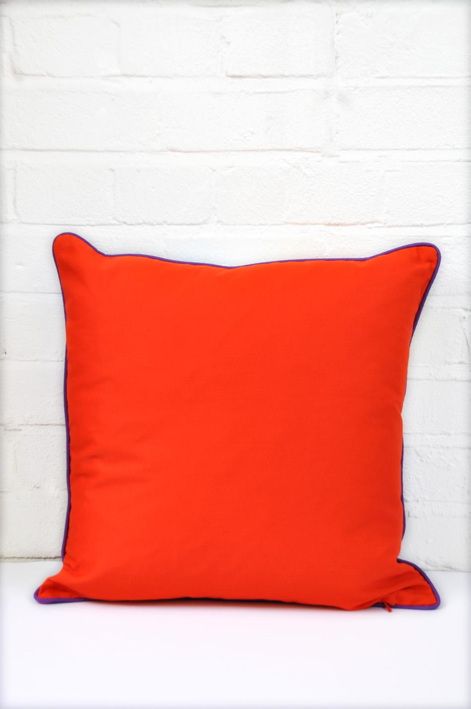 EmJay PrintPink&Turquoise-Orangebackcushion.jpg