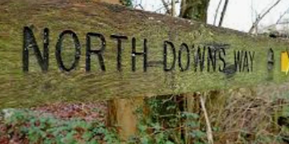 North Downs Way Hike (28km)