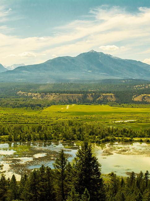 BC Plateau