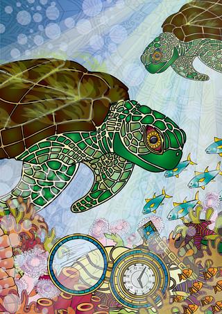 Sea Turts