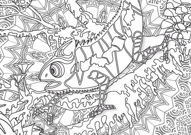 Chameleon of Time web-01.jpg