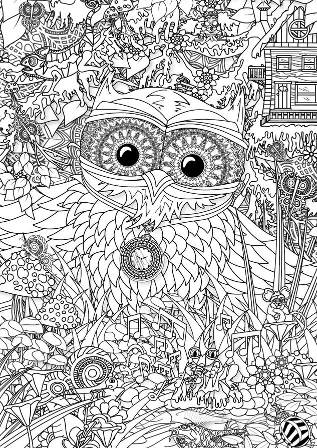 Owl of Forest WEB_Owl.jpg