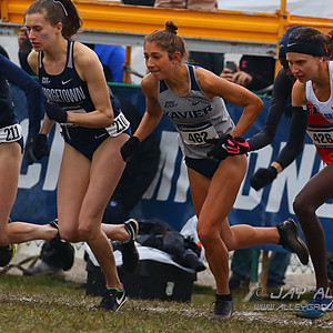 2019 NCAA D1 Cross Country Championships