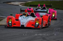 Daytona IMSA WTS IMG_9545 JWA