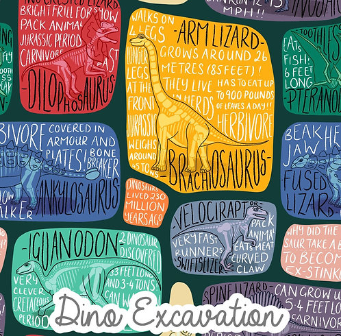 Dino Excavation - Twirly Dress