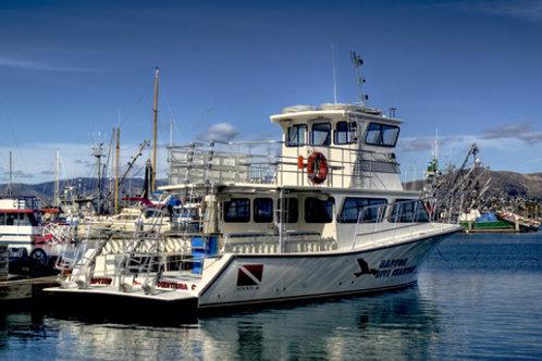 Boat Diver Certification