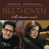 Amit Beethoven.png