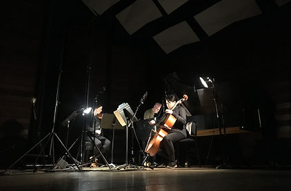 Delphi Trio with Liana Berube, Jeffrey LaDeur an Michelle Wong. Brahms and Beethoven piano trio.