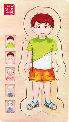puzzle en bois corps humain garçon