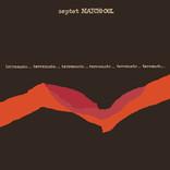 Terremoto by Septet Matchi-Oul