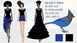 Starry Night Illustrations