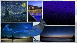 Starry Night Inspiration