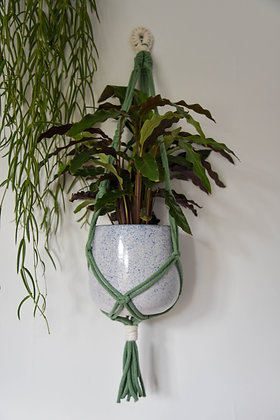 Green &  cream twist, plant hanger
